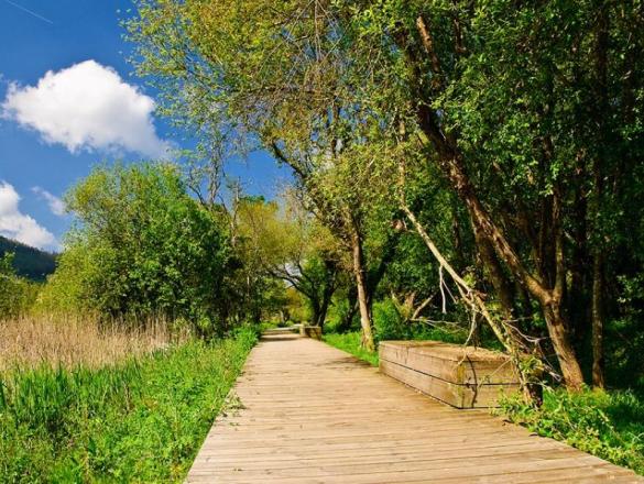 Paseo do rio Landro